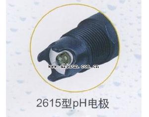 双液接pH复合电极-2615